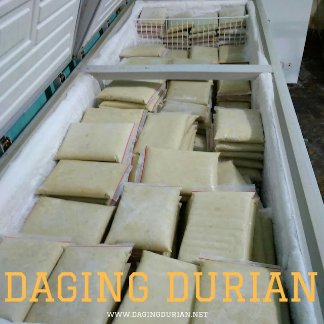 beli-disini-daging-durian-medan-frozen-di-jambi