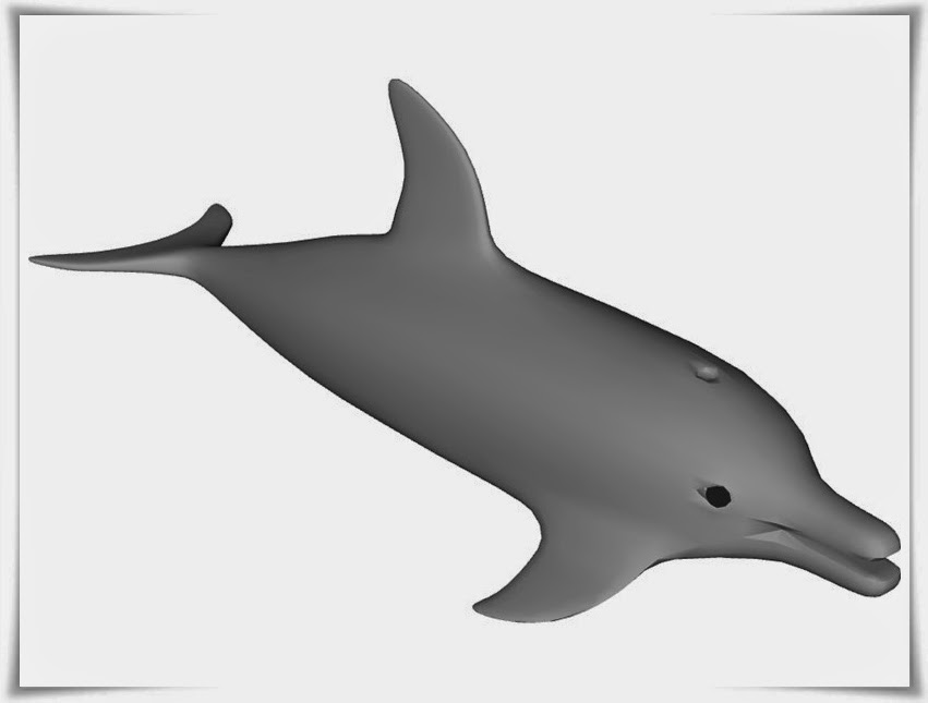 dolphin cartoon picture