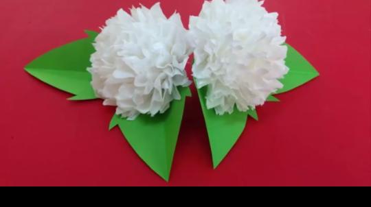 Aneka Tutorial Info Dan Resep Masakan Membuat Bunga Dari Tisu