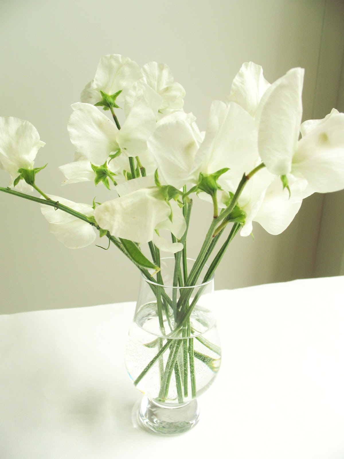 Inspiration for weddings invitations and stationeryWhite Sweet Pea Flower