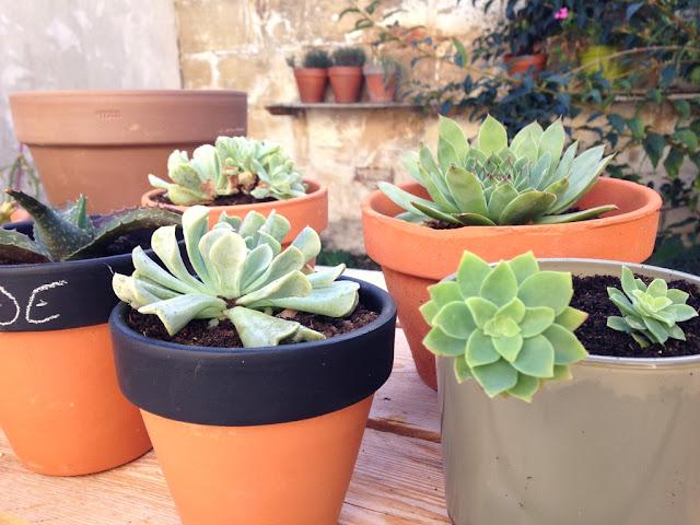 mandy bla bla mes petites nouvelles succulentes diy peinture ardoise pour pot en terre cuite. Black Bedroom Furniture Sets. Home Design Ideas