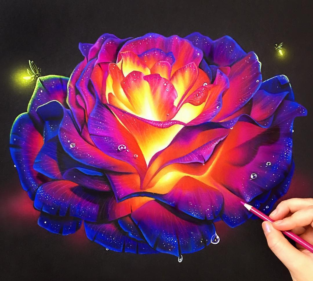 01-Glowing-Rose-Morgan-Davidson-Eclectic-Collection-of-Realistic-Drawings-www-designstack-co