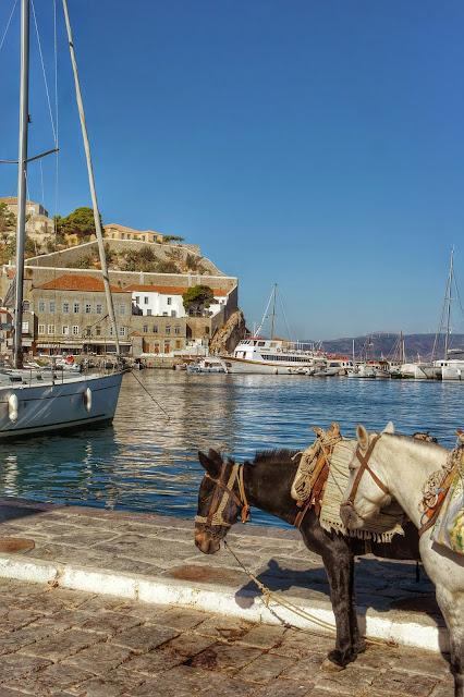 Burricos no porto de Hydra, Grécia