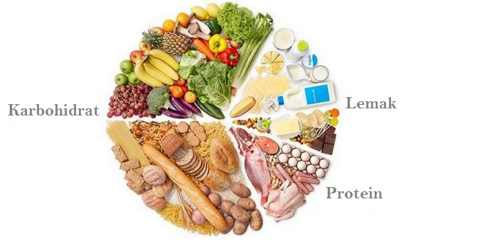 Dunia Biologi Karbohidrat Protein Lemak Dan Air Makanan Yang