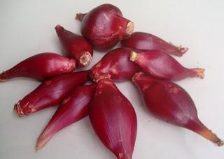 cara merebus bawang dayak,cara mengkonsumsi bawang dayak,budidaya bawang dayak,khasiat bawang dayak,cara mengolah bawang putih untuk menurunkan kolesterol,cara mengolah bawang dayak menjadi obat,