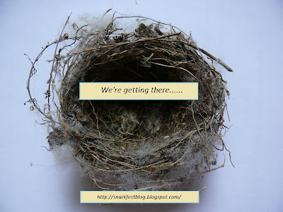 Almost Empty Nest.........