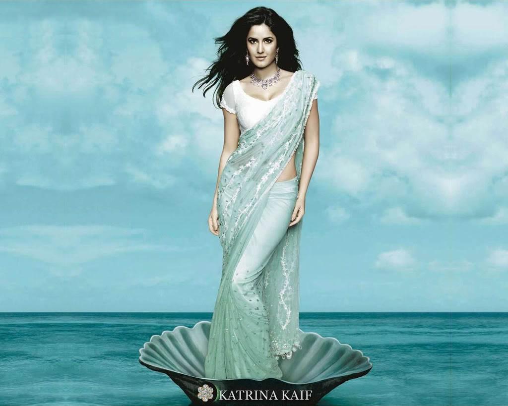 Katrina Kaif In Sexy Saree Wallpapers  Watch Hollywood News-9838