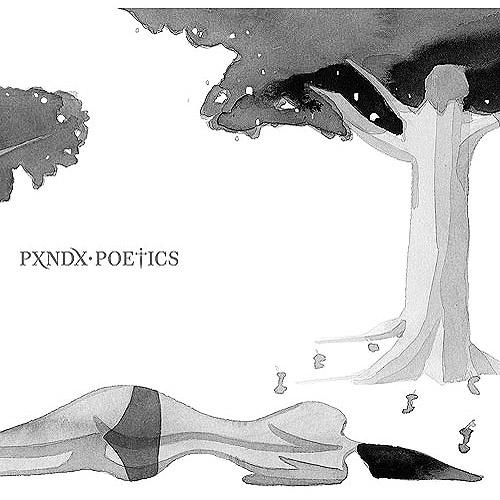 poetics panda completo