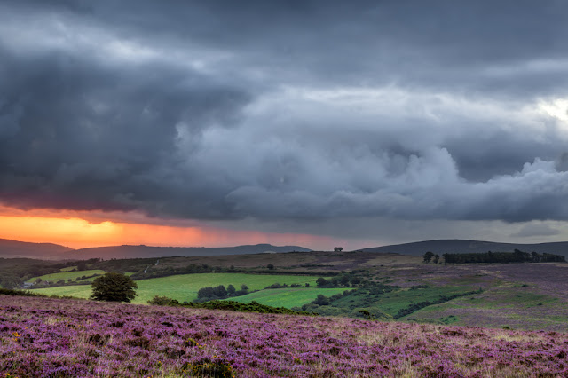 Exmoor National Park at sunrise with an orange horizon and heather foreground
