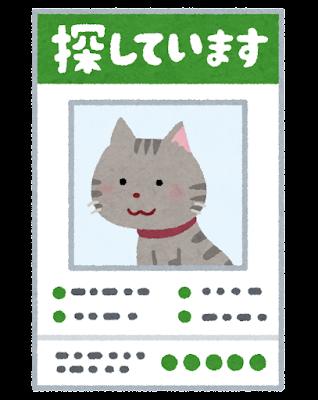 行方不明の猫のイラスト