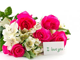 I Love You Red Roses Photos