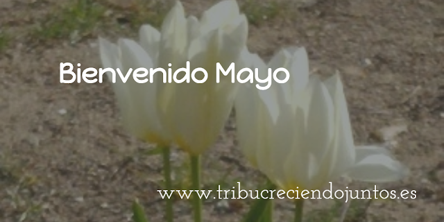 Bienvenido mayo