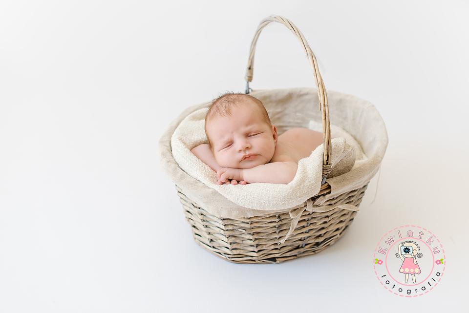 Sesja noworodkowa w plenerze trojmiasto gdansk