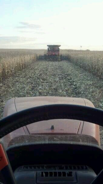 Views from my Tractor Seat - Making a new pass in a corn field