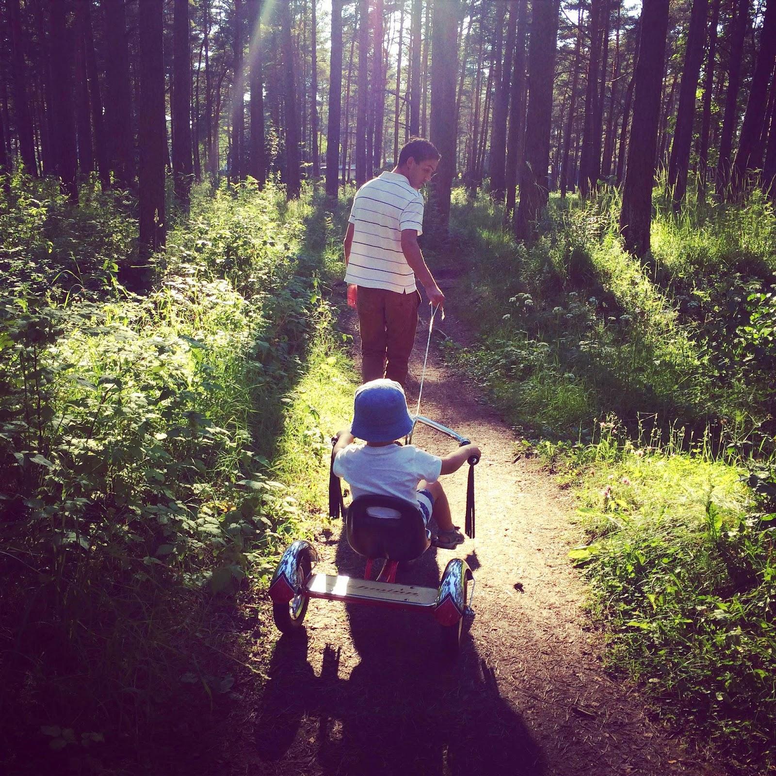 schwinn tricycle toddler bike