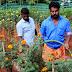 Onam Flower Farming for Charity by New PFA Club at Perumannur