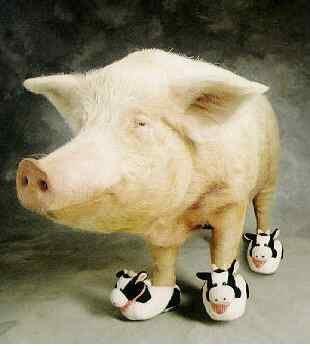 Moo shoo pork