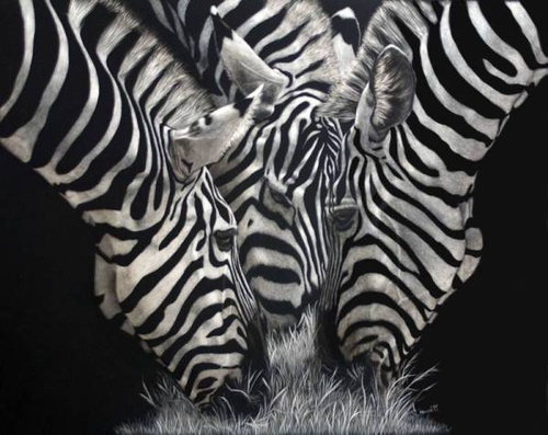 12-Zebras-Garden-Party-Lorna-Hannett-Animals-Drawings-Scratched-out-of-Ink-with-the-Scratchboard-www-designstack-co