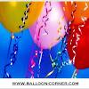 Curling Ribbon / Pita Balon (NEW COLOUR)
