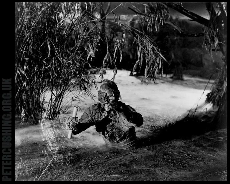 PETERCUSHINGBLOG.BLOGSPOT.COM (PCASUK): HAMMER FILM ...