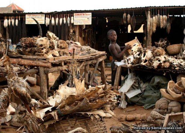 Akodessewa Market
