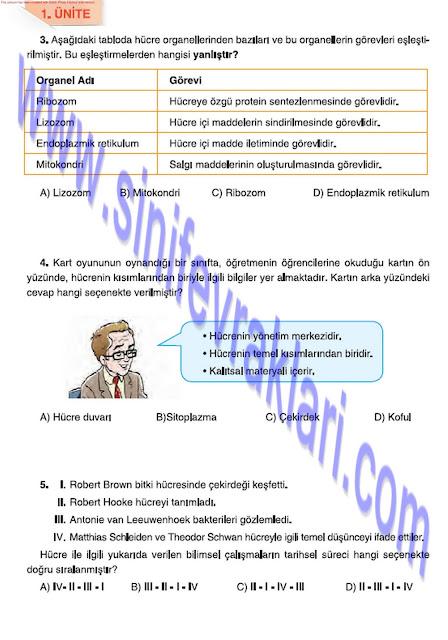 6. Sınıf Fen Bilimleri Tuna Matbaa Yayınları Ders Kitabı Cevapları Sayfa 28
