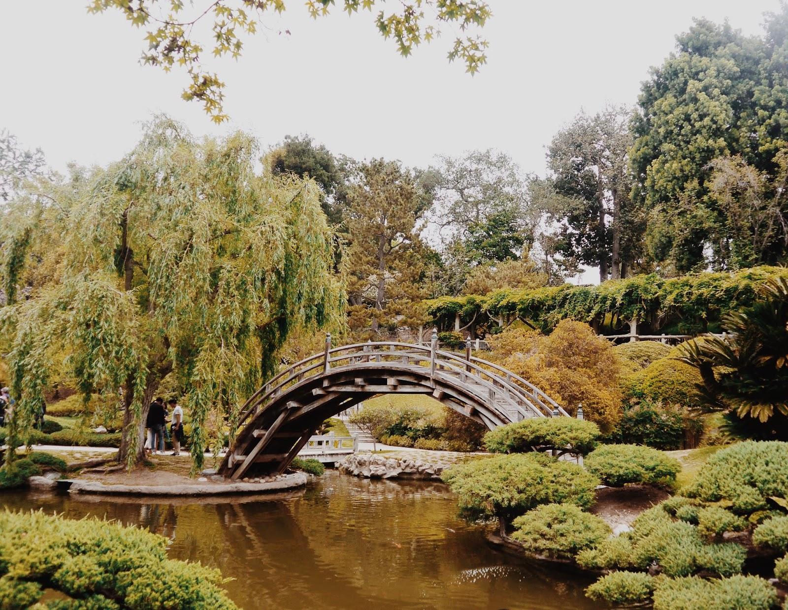 The Huntington Botanical Gardens | StephC