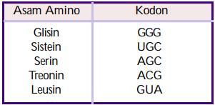 tabel soal urutan DNA - contoh soal tentang dna, rna, kromosom, gen