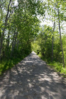 Part of the trail between Tudhope Park and the Narrows, Orillia