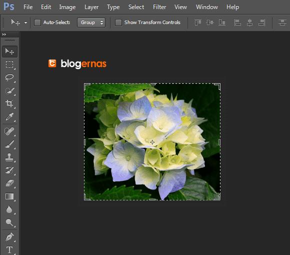 Cara Cropping Cepat Foto dengan Adobe Photoshop