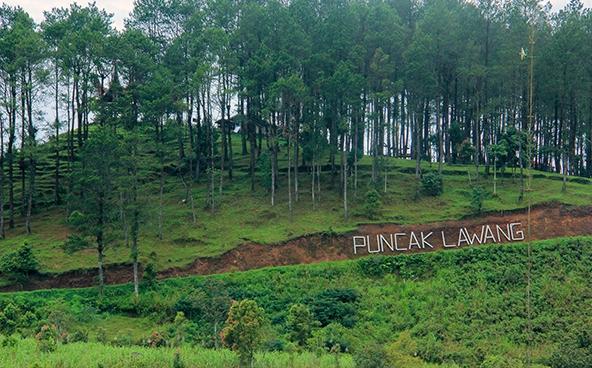 Menikmati Paralayang Di Puncak Lawang Sumatera Barat