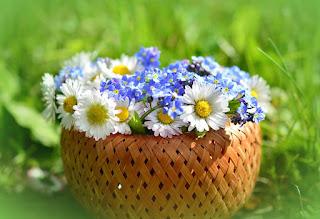 flores bonitas-portada green house
