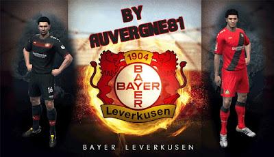 Bayer Leverkusen gdb 2016/2017
