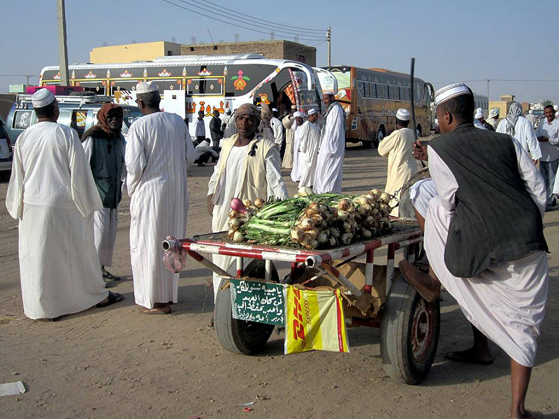 Onions for sale at the bus station in Dongola, Sudan.