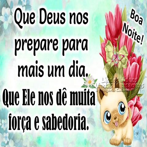Que Deus nos prepare  para mais um dia.  Que Ele nos dê muita  força e sabedoria.  Boa Noite!
