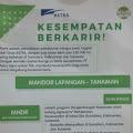 PT. Astra Agro Lestari Tbk, Buka Lowongan Kerja Jurusan Mandor Tanaman Lapangan