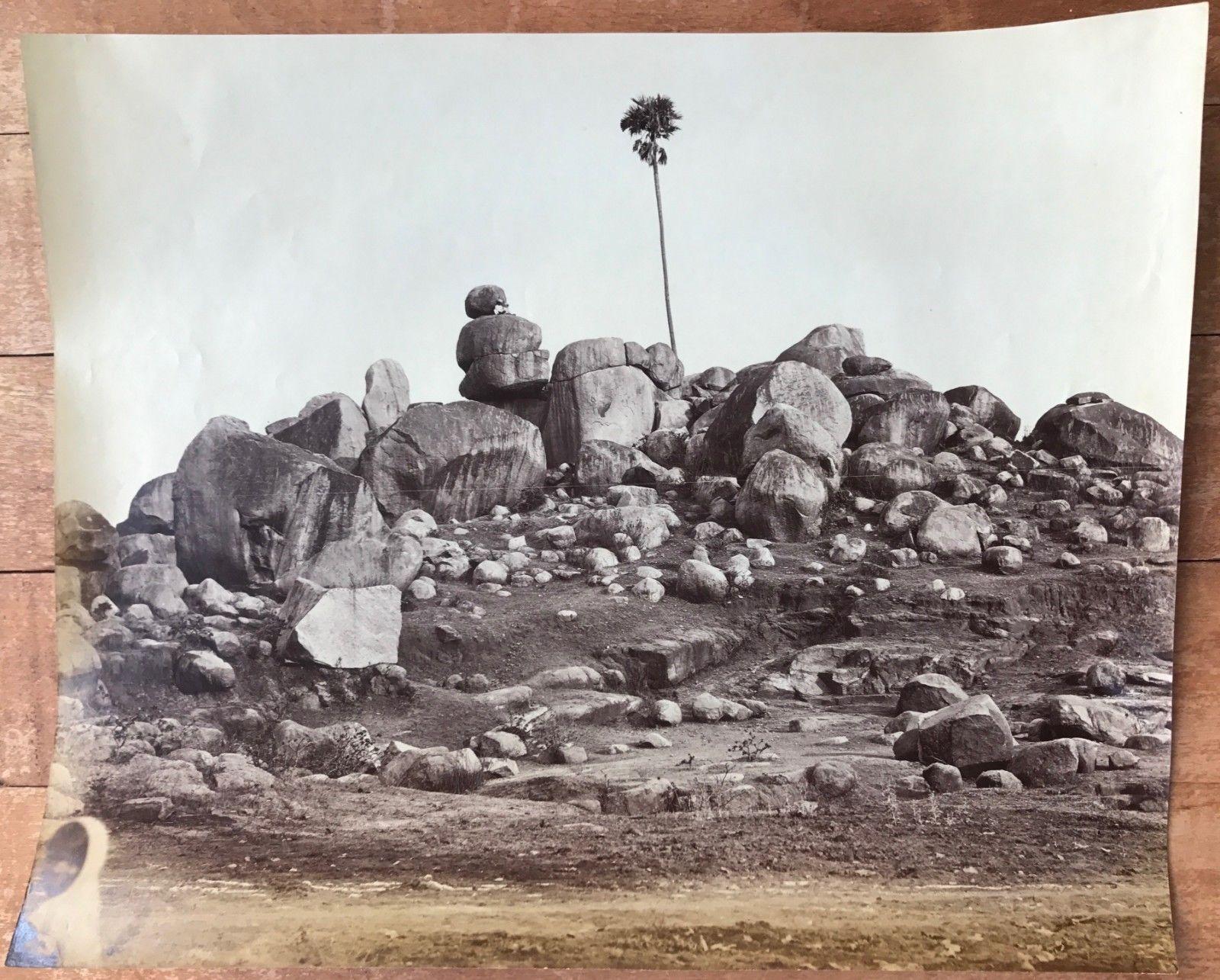 Tree in Rocky Landscape - c. 1860's