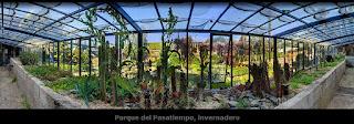 http://www.rottodigital.com/betanzos_pasatiempo_invernadero/pasatiempo_invernadero.html