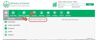 Electronic Inquiries MOI Diwan