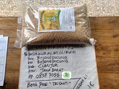 Benih pesanan HILMAN F Cianjur, Jabar.   (Sebelum Packing)