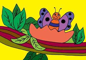 Cuento de mariposa
