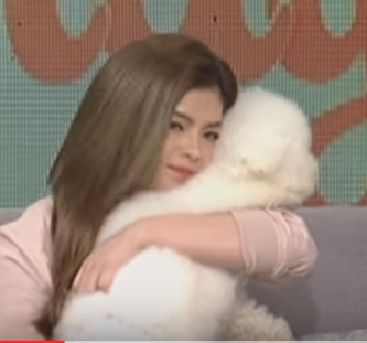 Angel Locsin Introduces Her 'Baby' To Public! Who Is He? Watch This!