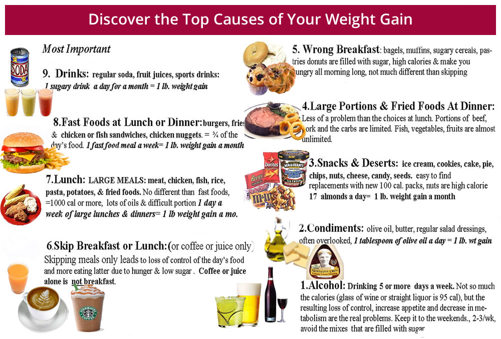 Your guide to nutrition plans for weight loss