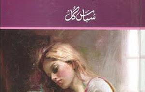 Free Download Urdu NOVEL Tumhare Bin Adhory Hain By Subas Gul