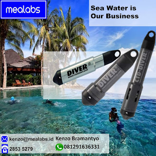 Data Logger Conductivity, Salinity, Water level, Water Temperature and Water Pressure