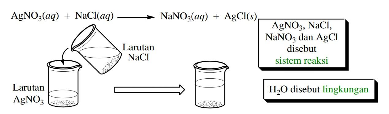 Sistem lingkungan reaksi eksoterm dan reaksi endoterm wanibesak contoh reaksi antara larutan perak nitrat dan larutan natirum klorida seperti pada gambar berikut ini ccuart Gallery
