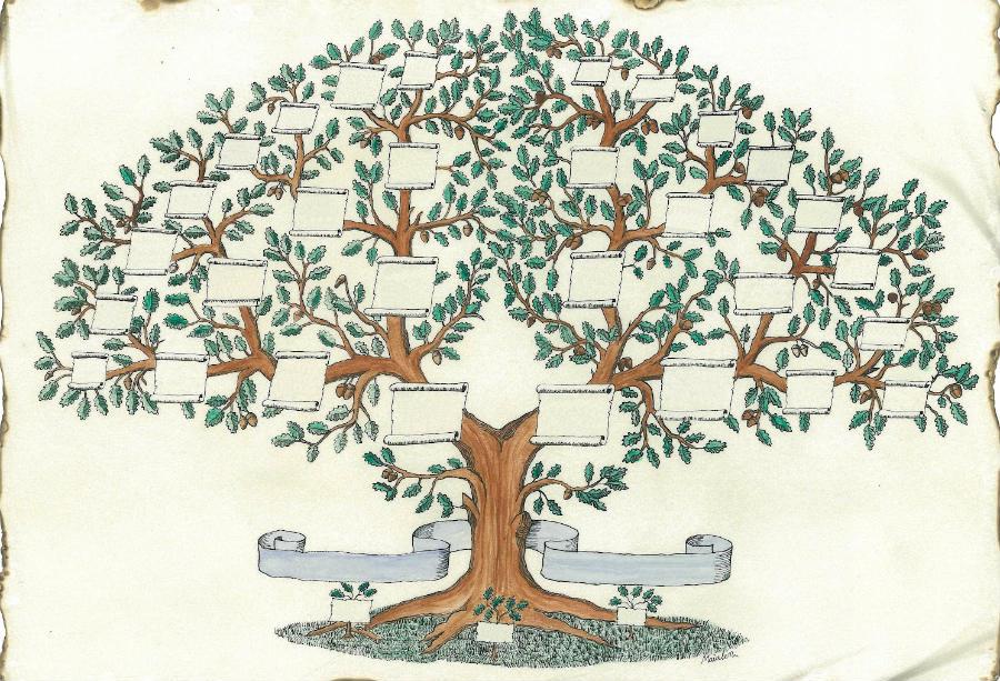 Te Lo Digo Y Te Lo Comento Construye Tu árbol Genealógico
