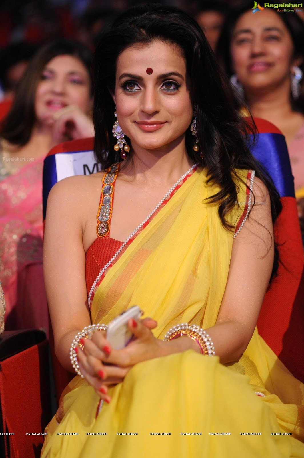 Hot Amisha Patel In Yellow Saree-3994
