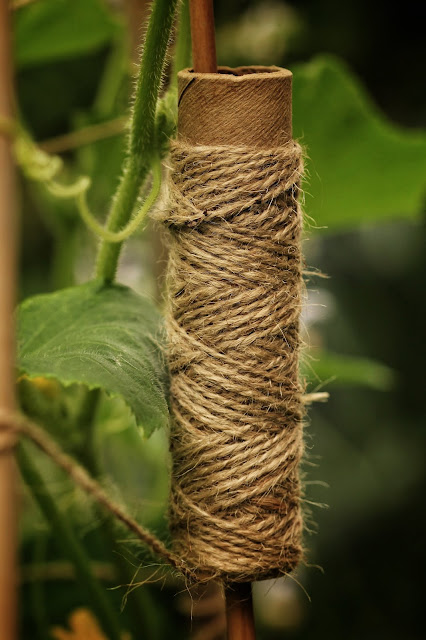 Twine on a bamboo pole in the garden