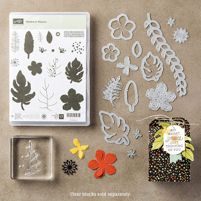 Botanical Builder Framelits and Botanical Blooms stamp set - Simply Stamping with Narelle - available here - http://www3.stampinup.com/ECWeb/default.aspx?dbwsdemoid=4008228